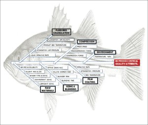 Creative Strategies: Using Fishbone Diagrams